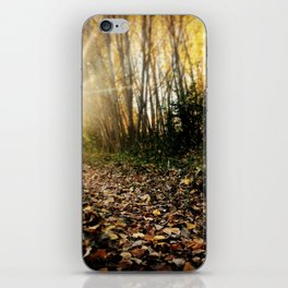 Walking cross autumn iPhone Skin