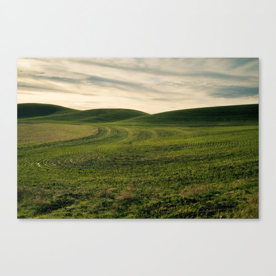 Sprouting Canvas Print