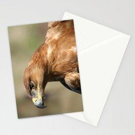 Tawny Eagle Profile Stationery Cards