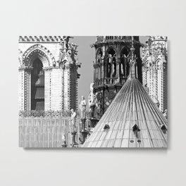 Notre Dame Roofscape Metal Print