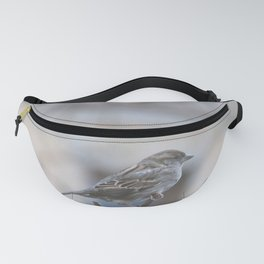 The Gathering Fanny Pack