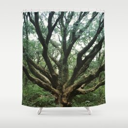 Age and Wisdom Shower Curtain