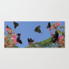 Butterflies in the Blue Canvas Print