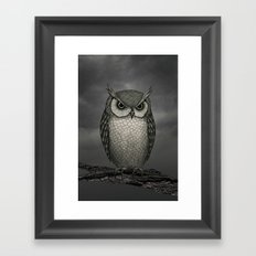 An Owl Framed Art Print