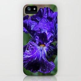 Insatiable Iris iPhone Case