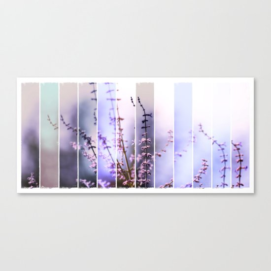 FLOWER - TWELVE Canvas Print