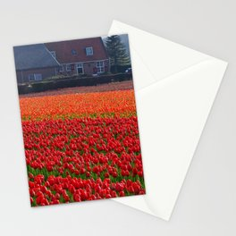 Fields of Red and Orange Tulips Stationery Cards