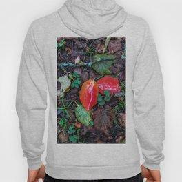 Red leaves Hoody