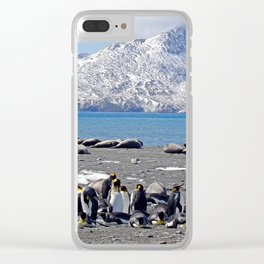 King Penguins and Fur Seals Clear iPhone Case