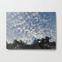 Blue Sky, White clouds Metal Print