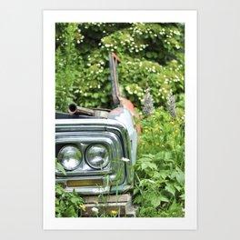 Deer Isle Series: Go Green Art Print