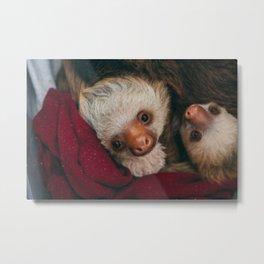 Baby Sloths in Blanket Metal Print