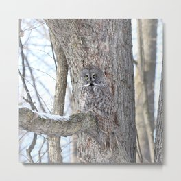 Great gray camouflage Metal Print