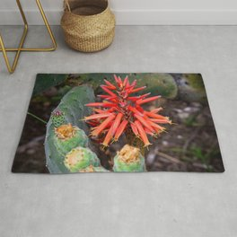 Cactus-Wrapped Flaming Firecraker Flower Rug