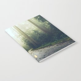 Redwood Forest Adventure - Nature Photography Notebook