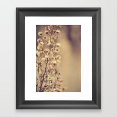 Sunday flowers Framed Art Print