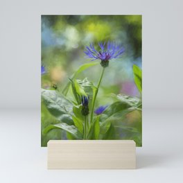 Splendor in the Garden Mini Art Print