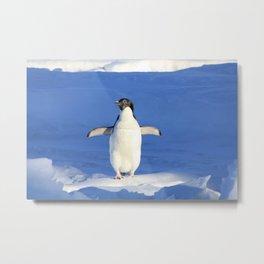Penguin surfing on ice Metal Print