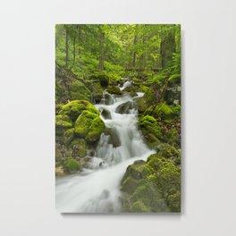 II - Waterfall in a lush gorge in Slovenský Raj, Slovakia Metal Print