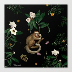 Monkey World: Amber-Ella Canvas Print