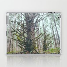 Old Growth Laptop & iPad Skin