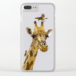 Perch of the Wild Clear iPhone Case