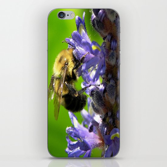 Bee all you can Bee iPhone Skin
