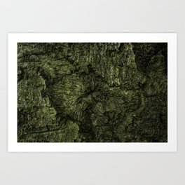 The Attractive Crevice Art Print