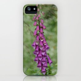 Lilac Lupins iPhone Case