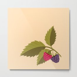 sprig with raspberry Metal Print