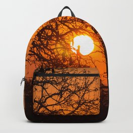 Sultry sun setting behind the sausage tree Backpack