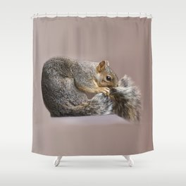 Shy squirrel Shower Curtain