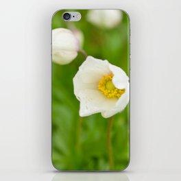Windflower III iPhone Skin
