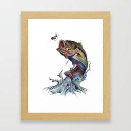 Bass Fish Framed Art Print