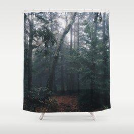Haines Falls #02 Shower Curtain