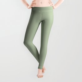 Solid Color Pale Pastel Green Pairs to Pantone 14-0114 TCX Celadon Green Leggings