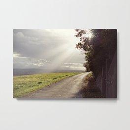 On the path... Metal Print