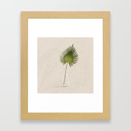 Fan Palm Framed Art Print