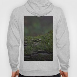 Almost Invisible  Hoody