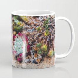 Coastal Desert Dwellers Coffee Mug