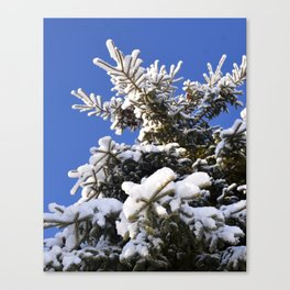 Winter Tree in the Forest Canvas Print