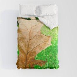 A Walk Through The Seasons Comforters