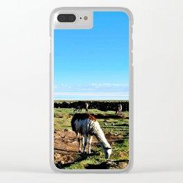 Llamas at the Salt flats Clear iPhone Case