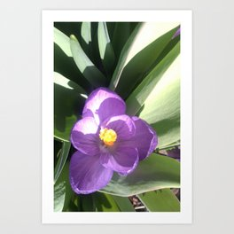 Easter Purple Art Print