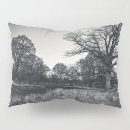 Nature Half Circle Pillow Sham