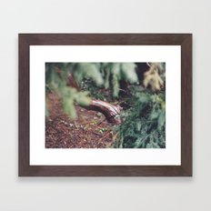 moist Framed Art Print