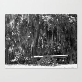 Savanah Cannon Canvas Print