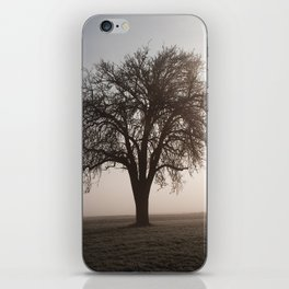 Solitude Frost iPhone Skin