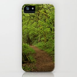 The Road to Faerie iPhone Case
