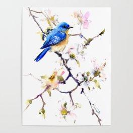Bluebird and Dogwood, bird and flowers spring colors spring bird songbird design Poster